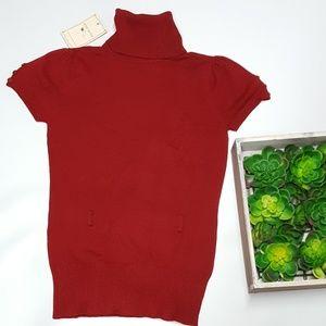 Pink Rose Turtleneck sweater -B2